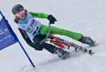 SPORT, Skibob, Weltmeisterschaft 2014, Spital am Semmering, 26.0